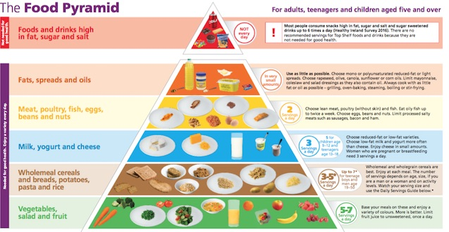 New Food Pyramaid Launched – FDYS